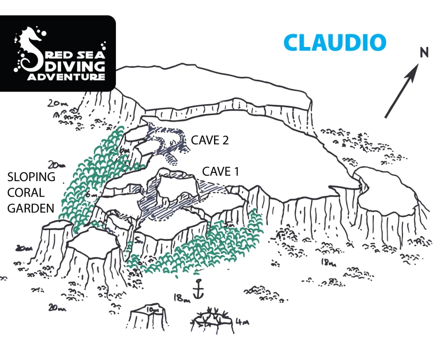 Claudio or Claudia is famous for her big caves and stunning coral gardens. A must dive for many opus.