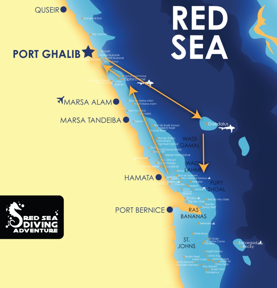 Departing from Port Ghalib to the famous Daedalus Reef,known for its schooling hammerhead, then onto Fury shoal with Sataya (Dolphin house), Claudio, Malahi and many others. Next stop the famous Elphinstone Reef.