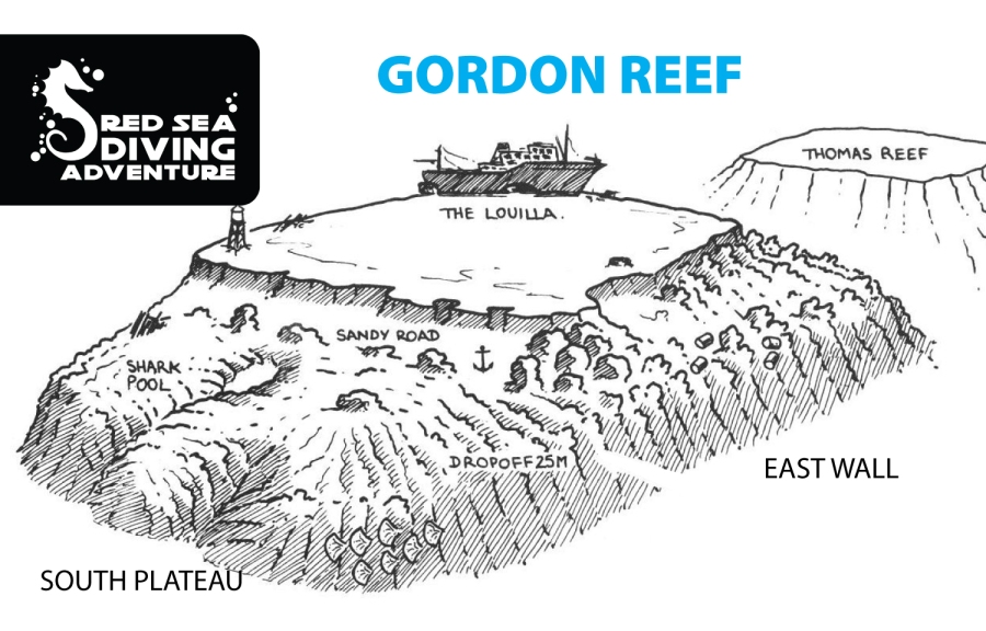 Gorned reef is right next to Thomas reef an easily recognized bu the wreck on the top the reef. The currents can pick up and that together with the deep walls can bring you any surprise imaginable. From eagle rays till tuna, schools barracuda and even sharks.
