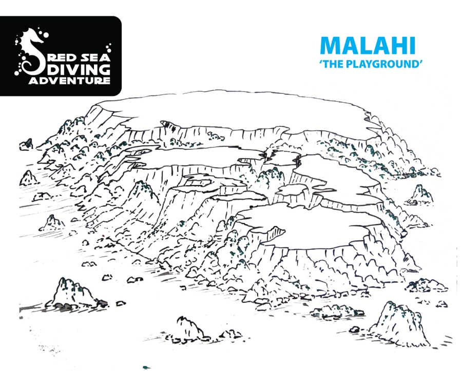 This playground known as Malahi is an absolute pearl. Large pinnacles and block come from 20-25 meters up to the surface and are sitting quite closet each other. Loads of swim-throughs are the result and those are overgrown with big hard corals.