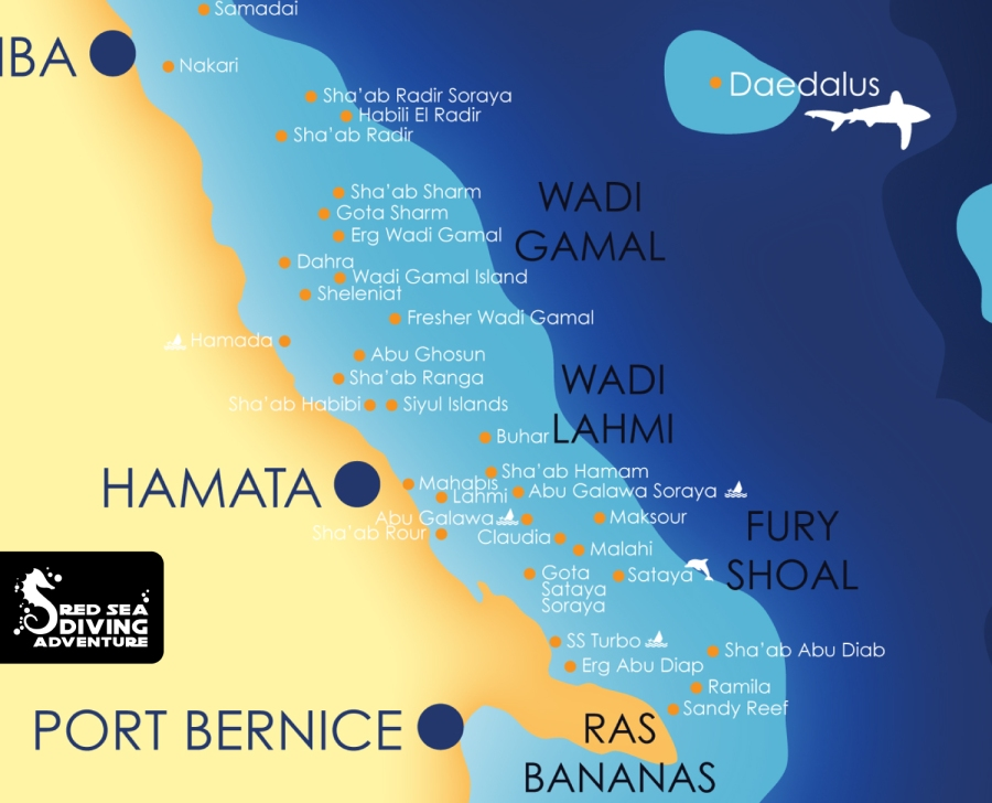 Fury shoal also known as Sataya is a reef system south of Hamata and is famous for stunning hard coral gardens and some caverns and not to forget the home of a famous dolphin house.
