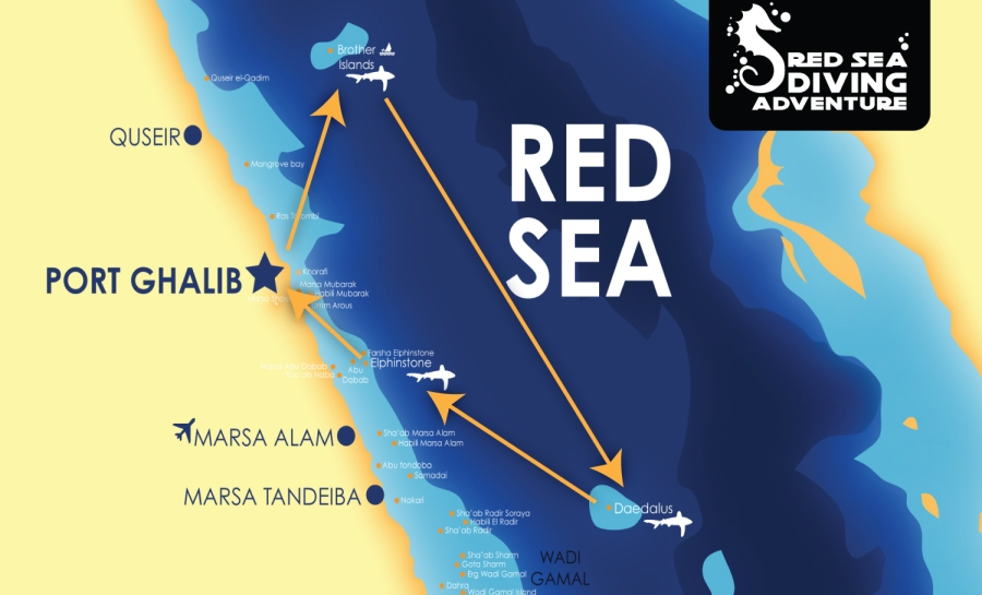 The colder triangle a.k.a. simply the best focusses on the BrotherIslands, Daedalus Reef and Elphinstone. To be travelled from both Port Ghalib as well as Hurghada.