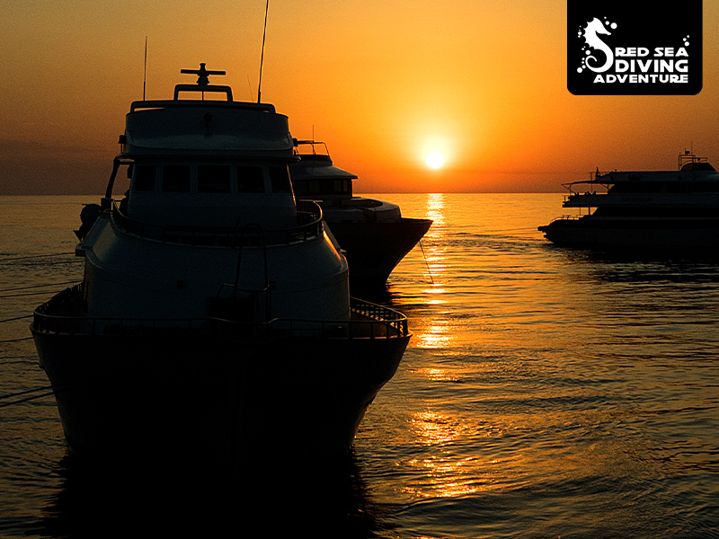 Liveaboards in a setting sun over a calm Red Sea.