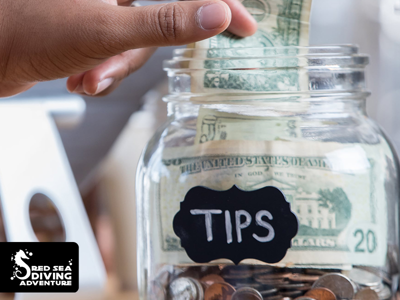 Tipping for the crew For those who have been travelling by liveaboard or safari boat before, you know that we have a tipping culture for the guides and the crew. We keep this culture is place to assure that crew and guides provide the best possible trip in the given circumstances. Of course you are free to tip as you please, here are a few considerations: The tipping will be organized on the last day of travelling. Tipping left for the crew will be divided equally among all members. Please make a tipping in cash, unfortunately we are not allowed to take any tipping on a credit-card payment. Tipping can be done in USD, Euro, Egyptian pounds and GBP. Please note that we cannot exchange any coins or 'old' type notes. As a guideline we advise you to tip 10% of your booking-price per perso